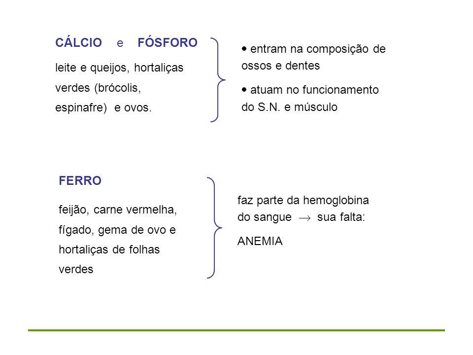 CÁLCIO e FÓSFORO FERRO entram na composição de ossos e dentes