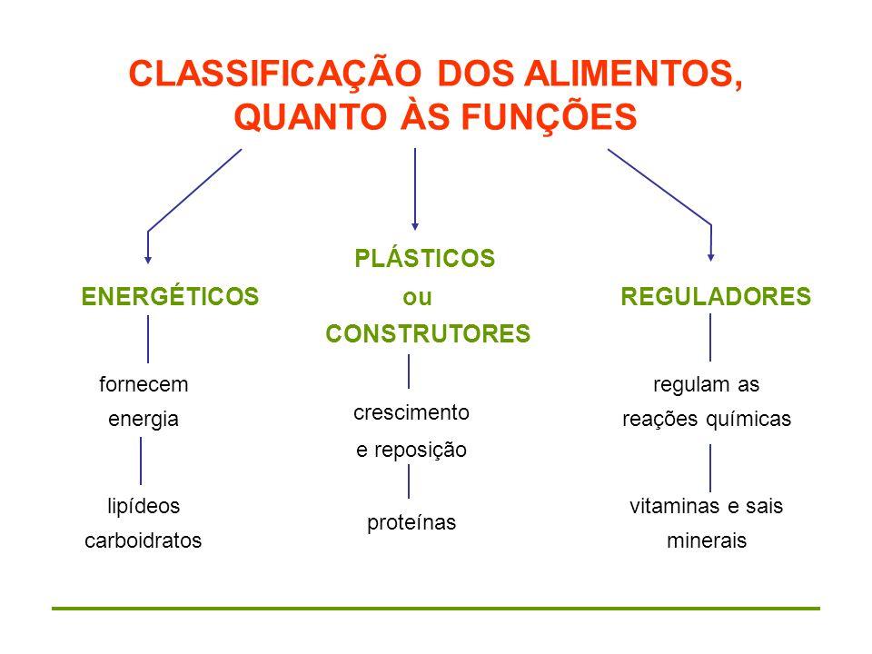 CLASSIFICAÇÃO DOS ALIMENTOS, QUANTO ÀS FUNÇÕES