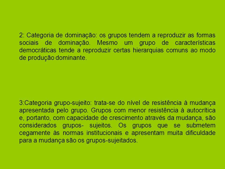 2: Categoria de dominação: os grupos tendem a reproduzir as formas sociais de dominação. Mesmo um grupo de características democráticas tende a reproduzir certas hierarquias comuns ao modo de produção dominante.