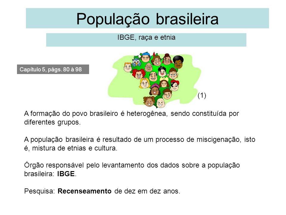 População brasileira IBGE, raça e etnia (1)