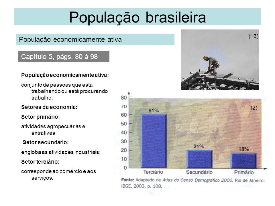 População brasileira População economicamente ativa