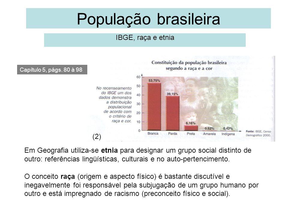 População brasileira IBGE, raça e etnia 1 (2)