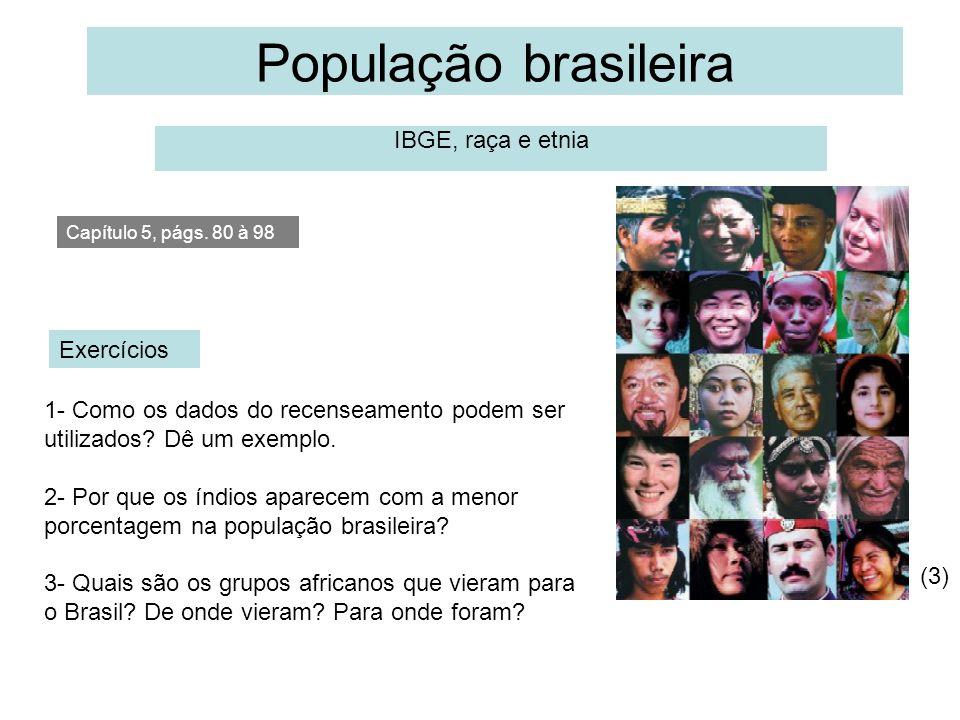 População brasileira IBGE, raça e etnia Exercícios 1