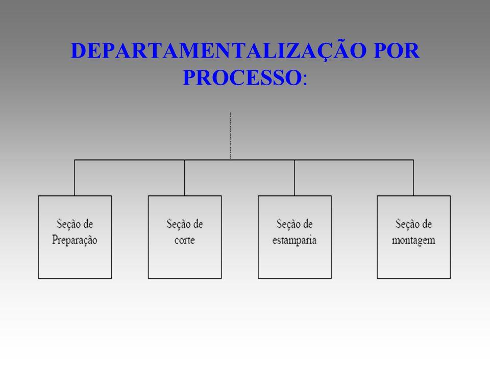 DEPARTAMENTALIZAÇÃO POR PROCESSO: