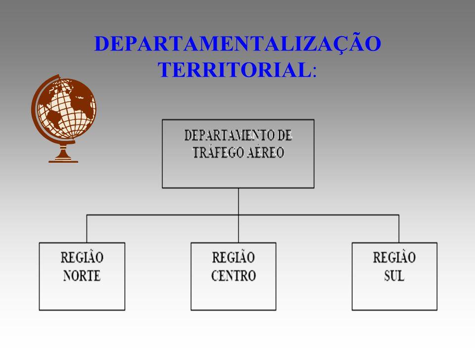 DEPARTAMENTALIZAÇÃO TERRITORIAL: