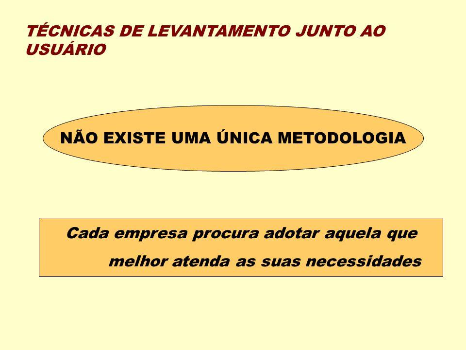 TÉCNICAS DE LEVANTAMENTO JUNTO AO USUÁRIO