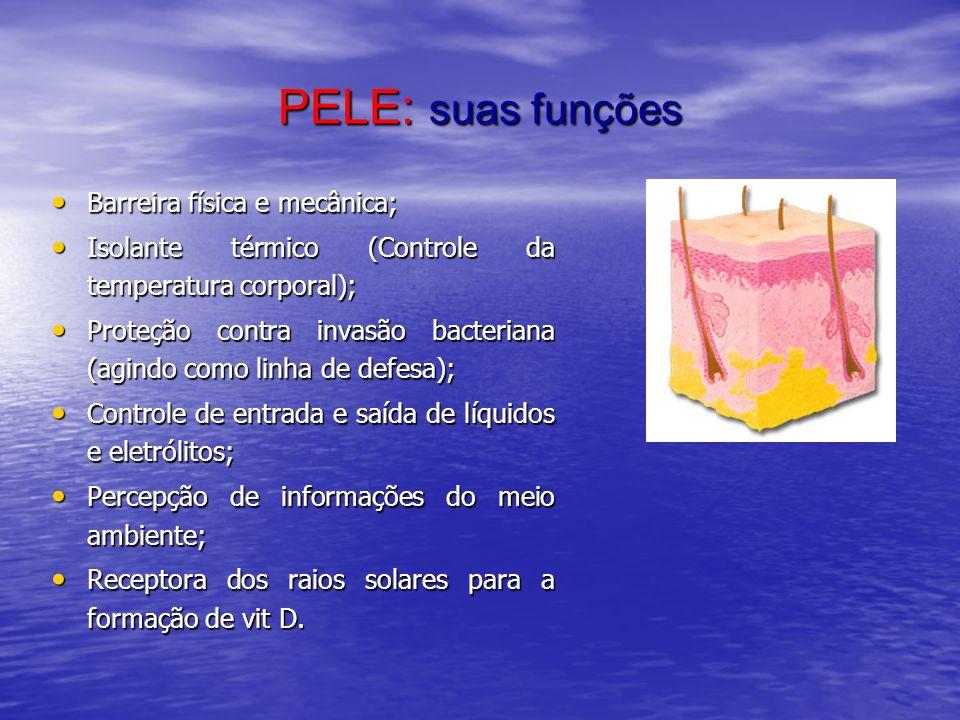PELE: suas funções Barreira física e mecânica;