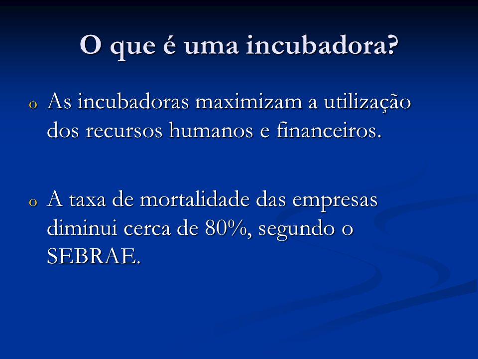 O que é uma incubadora As incubadoras maximizam a utilização dos recursos humanos e financeiros.