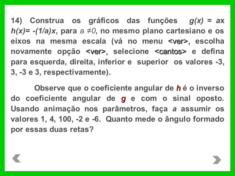 14) Construa os gráficos das funções g(x) = ax h(x)= -(1/a)x, para a ≠0, no mesmo plano cartesiano e os eixos na mesma escala (vá no menu <ver>, escolha novamente opção <ver>, selecione <cantos> e defina para esquerda, direita, inferior e superior os valores -3, 3, -3 e 3, respectivamente).