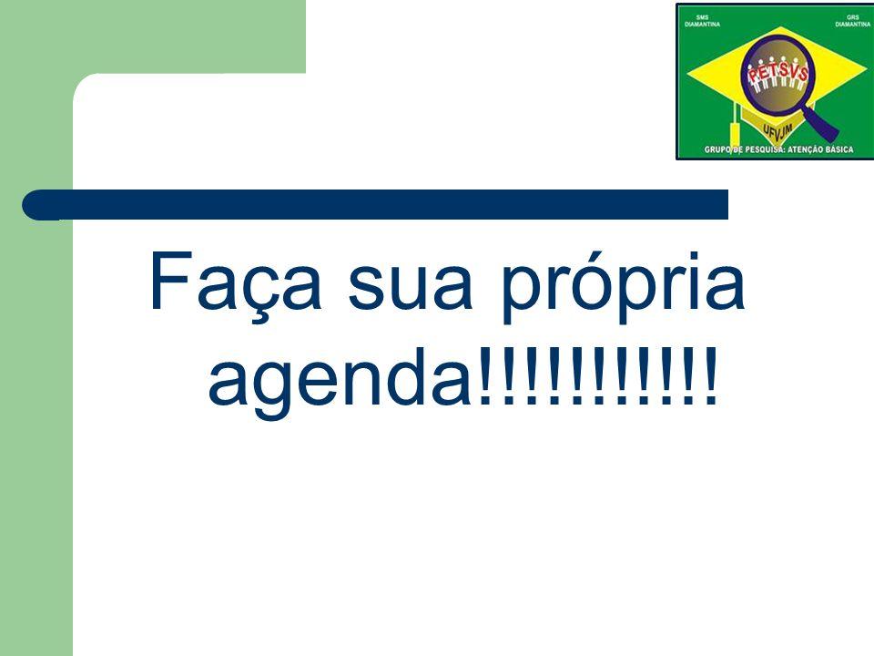 Faça sua própria agenda!!!!!!!!!!!