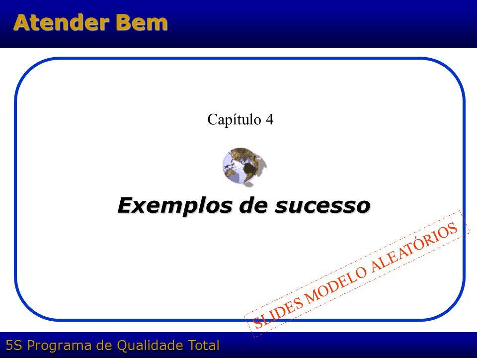 Capítulo 4 Exemplos de sucesso SLIDES MODELO ALEATÓRIOS