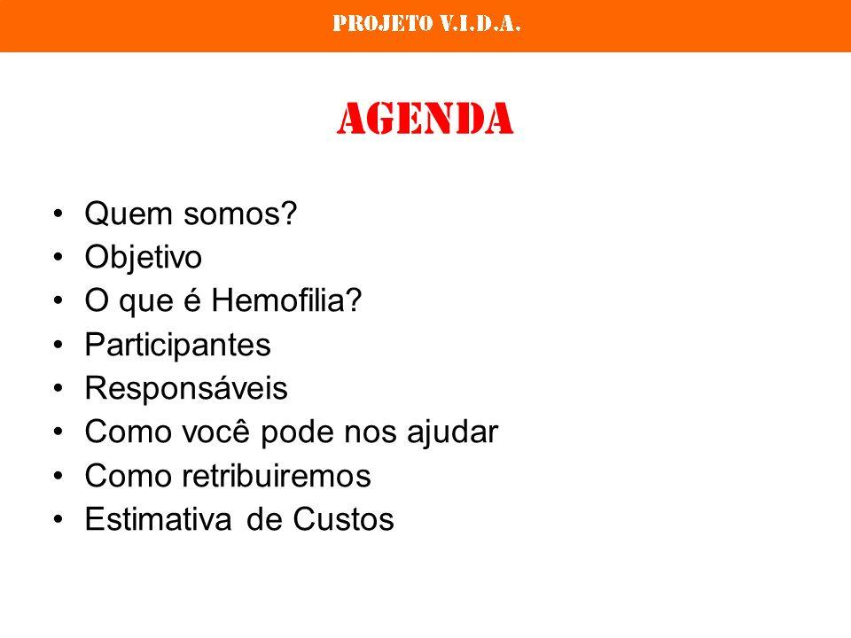 Agenda Quem somos Objetivo O que é Hemofilia Participantes