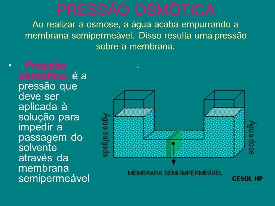 PRESSÃO OSMÓTICA Ao realizar a osmose, a água acaba empurrando a membrana semipermeável. Disso resulta uma pressão sobre a membrana. .