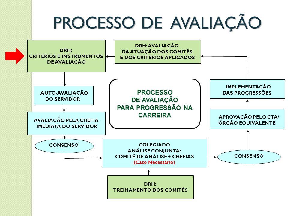 PROCESSO DE AVALIAÇÃO IMPLEMENTAÇÃO PROCESSO DE AVALIAÇÃO