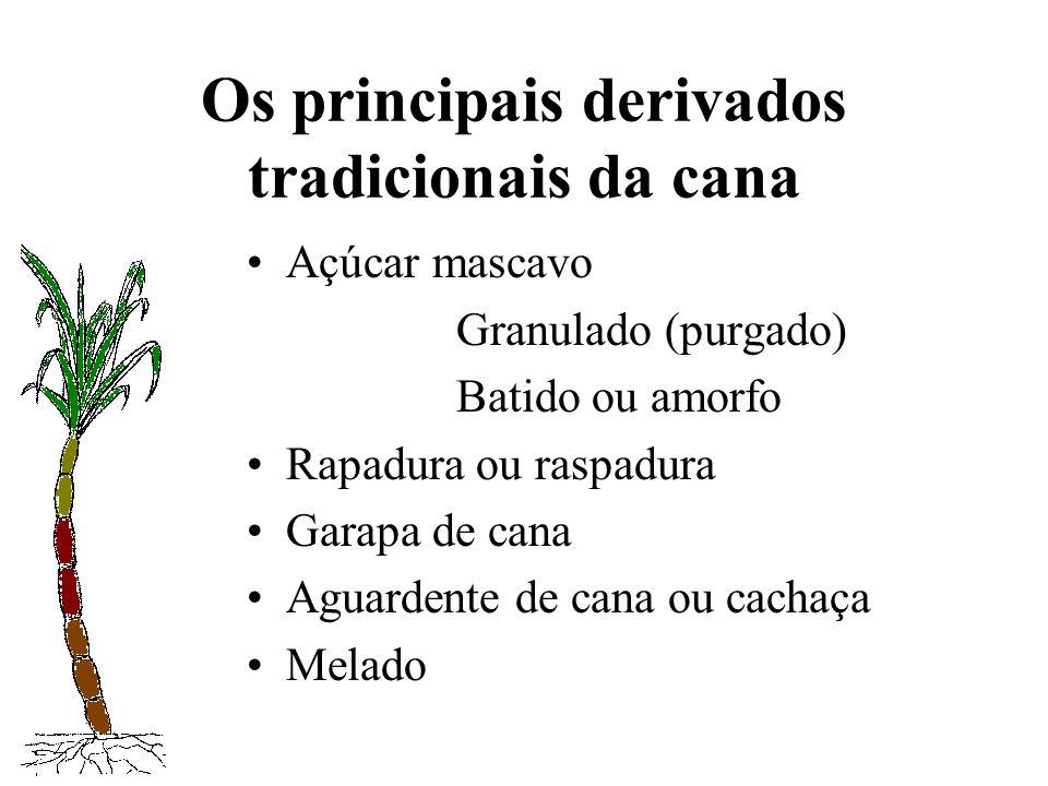 Os principais derivados tradicionais da cana