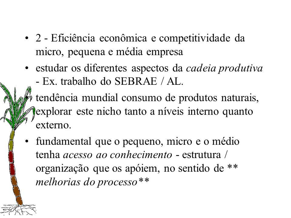 2 - Eficiência econômica e competitividade da micro, pequena e média empresa