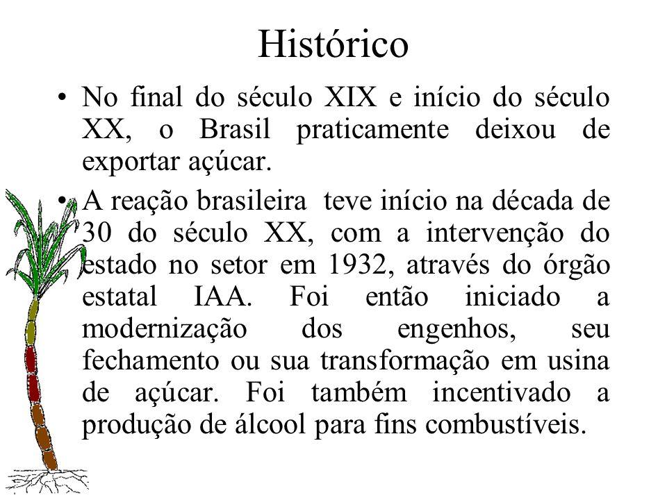 Histórico No final do século XIX e início do século XX, o Brasil praticamente deixou de exportar açúcar.