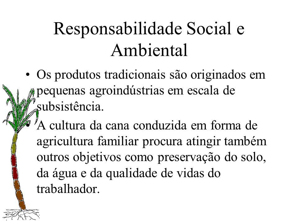 Responsabilidade Social e Ambiental