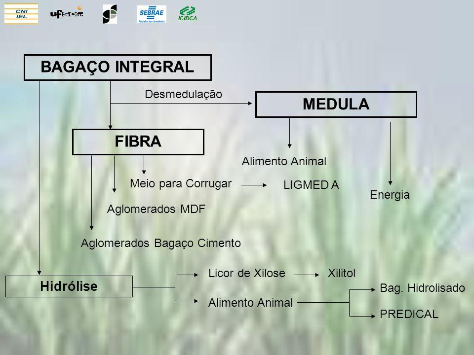 BAGAÇO INTEGRAL MEDULA FIBRA