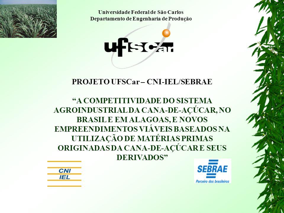 PROJETO UFSCar – CNI-IEL/SEBRAE
