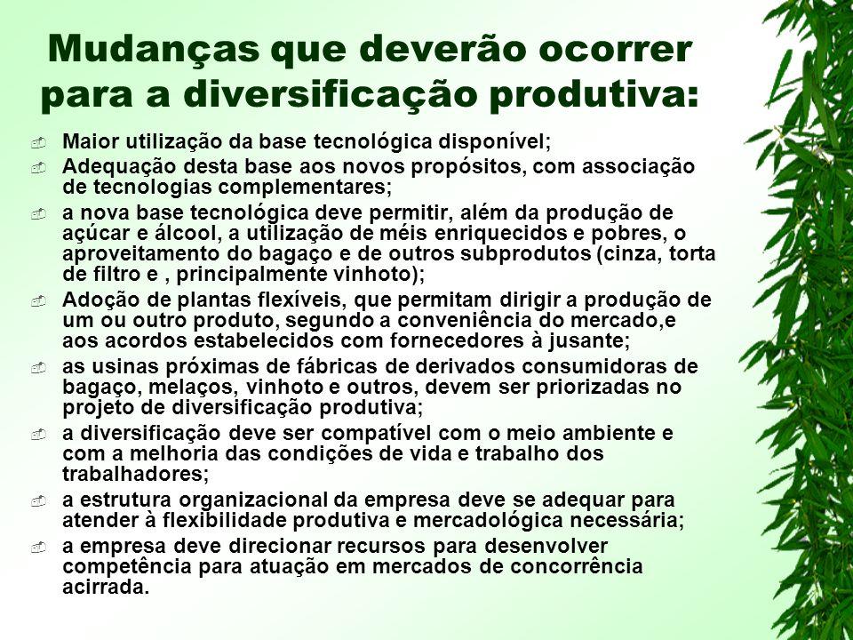 Mudanças que deverão ocorrer para a diversificação produtiva: