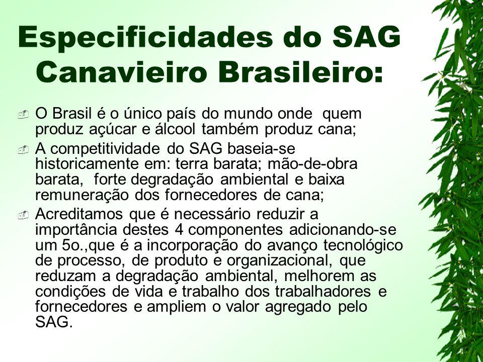 Especificidades do SAG Canavieiro Brasileiro:
