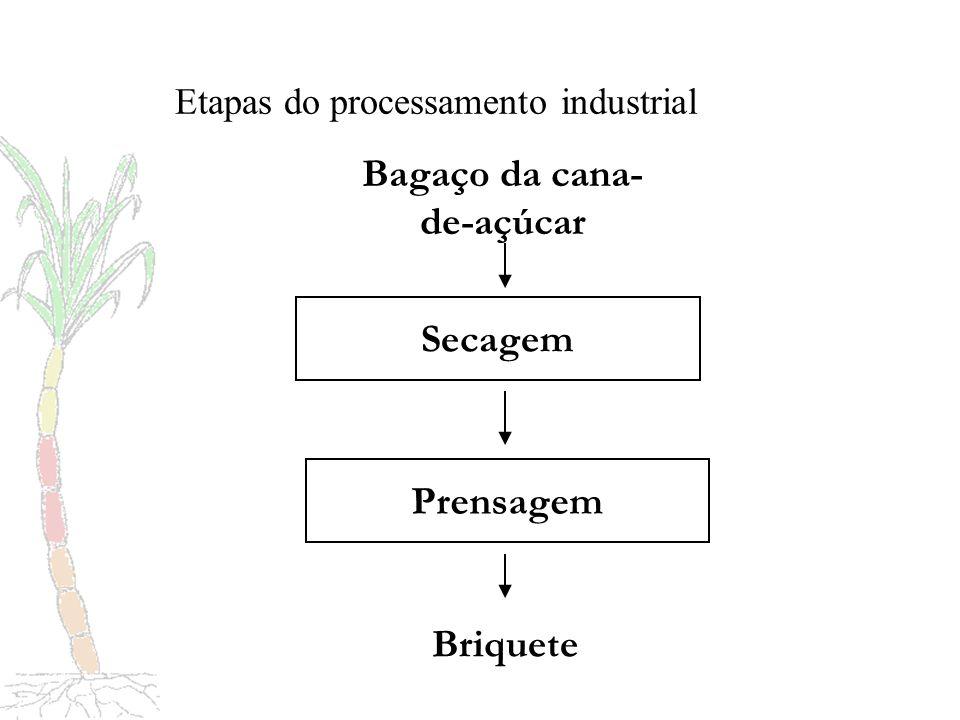 Etapas do processamento industrial