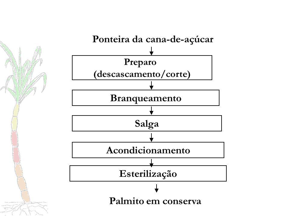 (descascamento/corte) Ponteira da cana-de-açúcar