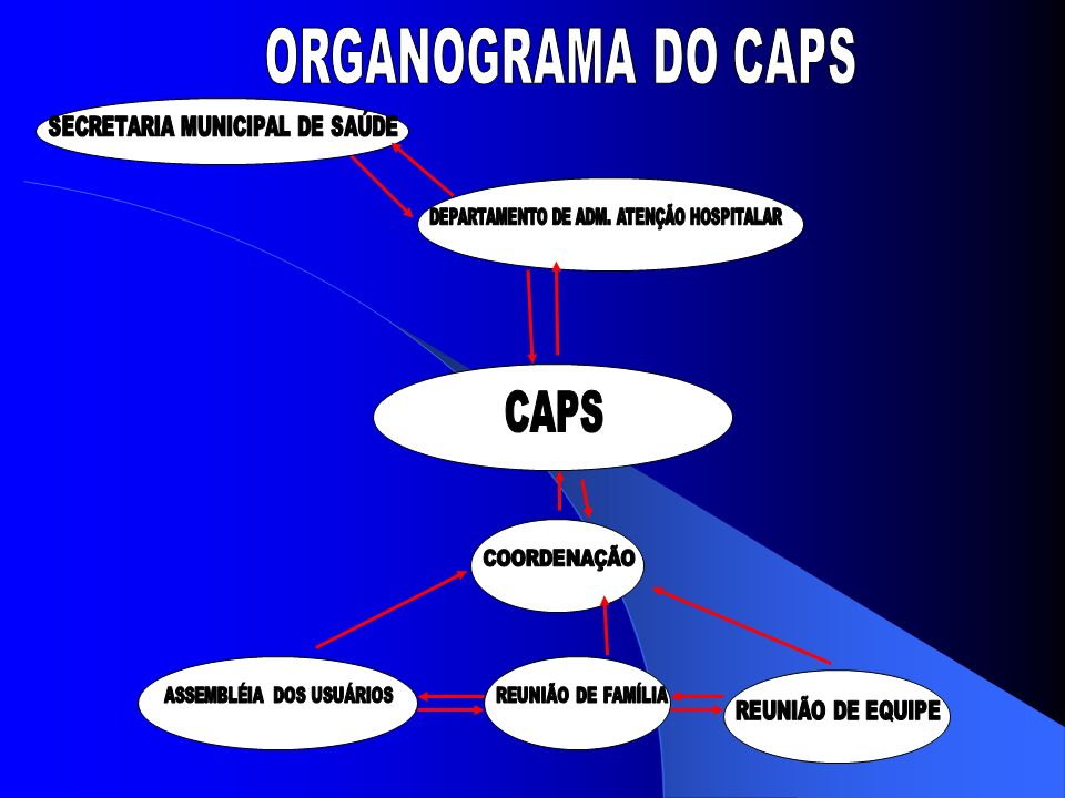 ORGANOGRAMA DO CAPS CAPS SECRETARIA MUNICIPAL DE SAÚDE