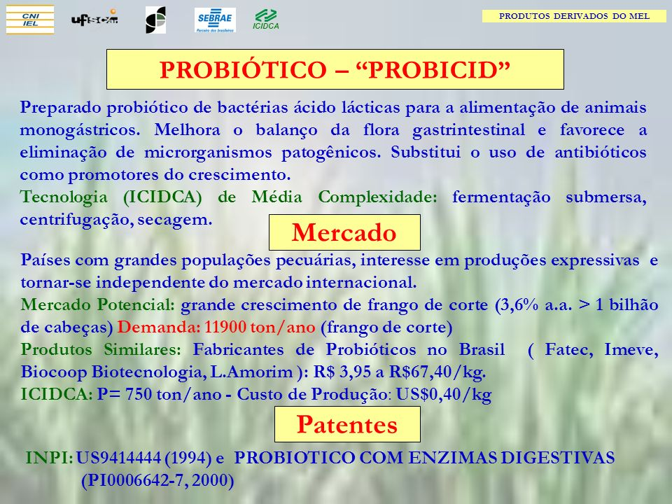 PRODUTOS DERIVADOS DO MEL PROBIÓTICO – PROBICID