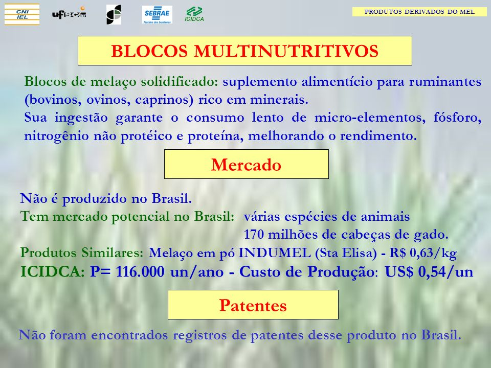 BLOCOS MULTINUTRITIVOS Mercado Patentes