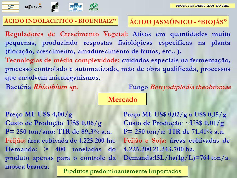 Fungo Botryodiplodia theobromae