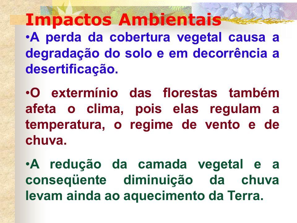 Impactos Ambientais A perda da cobertura vegetal causa a degradação do solo e em decorrência a desertificação.