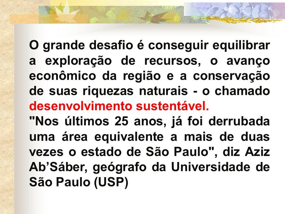 O grande desafio é conseguir equilibrar a exploração de recursos, o avanço econômico da região e a conservação de suas riquezas naturais - o chamado desenvolvimento sustentável.