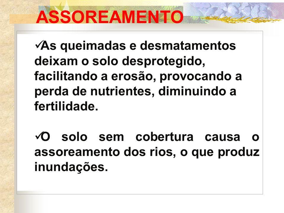 ASSOREAMENTO