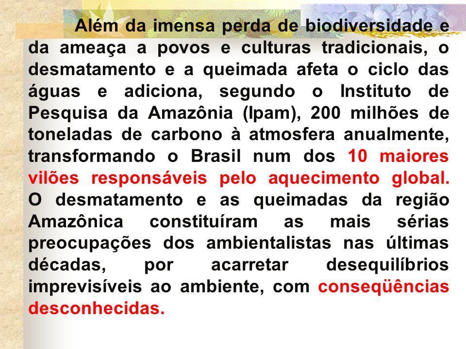 Além da imensa perda de biodiversidade e da ameaça a povos e culturas tradicionais, o desmatamento e a queimada afeta o ciclo das águas e adiciona, segundo o Instituto de Pesquisa da Amazônia (Ipam), 200 milhões de toneladas de carbono à atmosfera anualmente, transformando o Brasil num dos 10 maiores vilões responsáveis pelo aquecimento global.