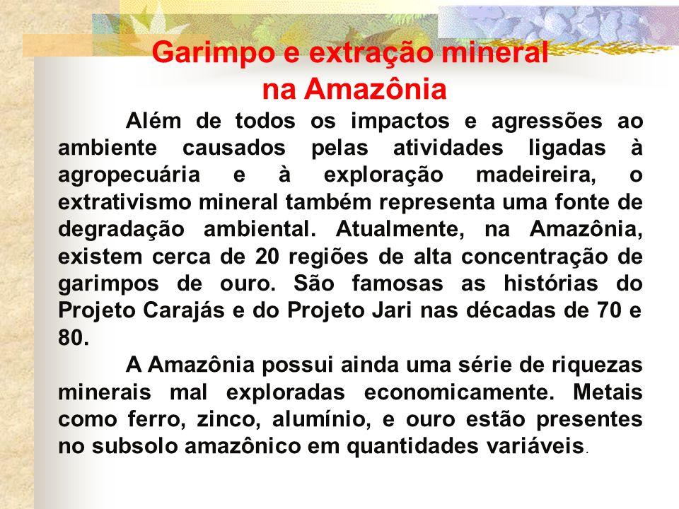 Garimpo e extração mineral