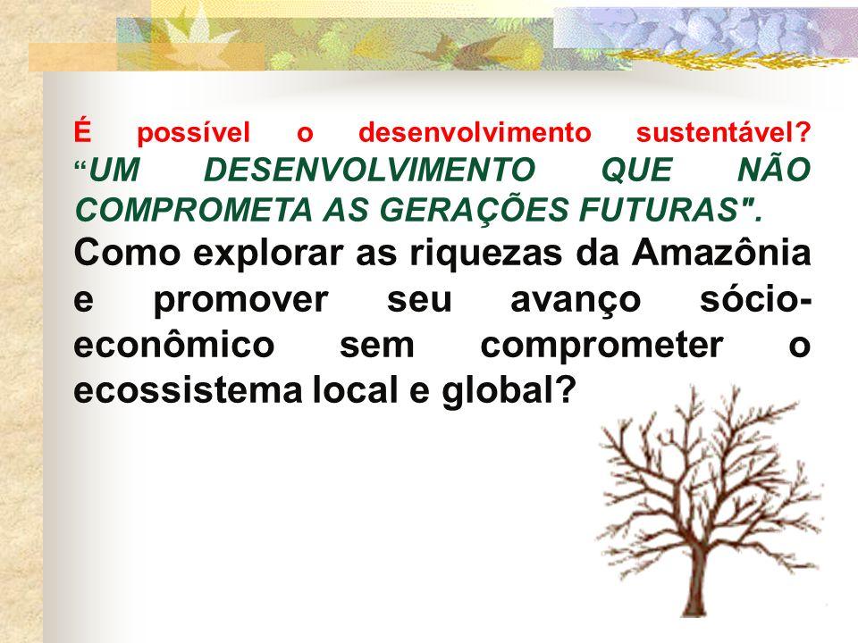 É possível o desenvolvimento sustentável