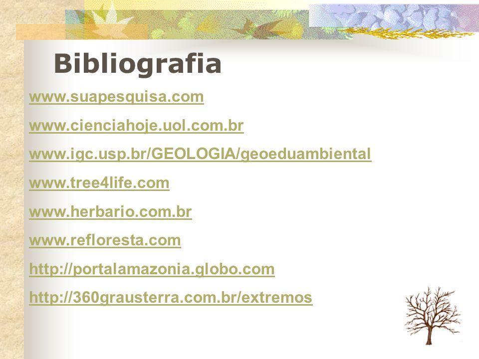 Bibliografia www.suapesquisa.com www.cienciahoje.uol.com.br