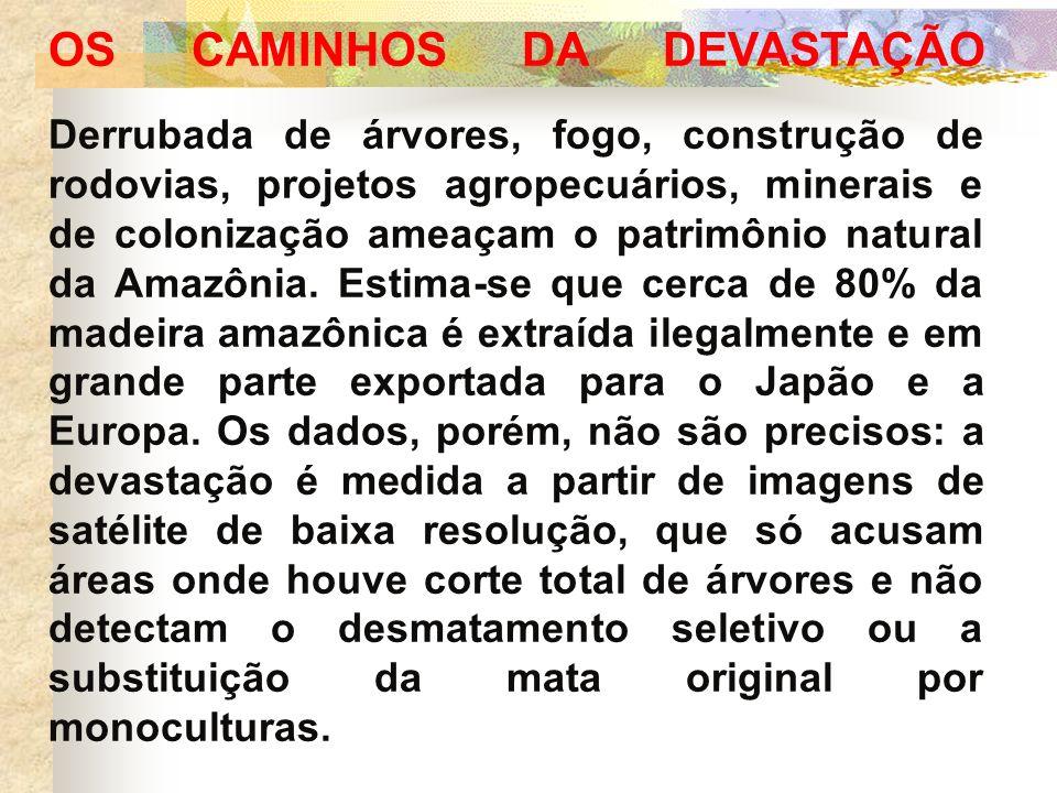 OS CAMINHOS DA DEVASTAÇÃO Derrubada de árvores, fogo, construção de rodovias, projetos agropecuários, minerais e de colonização ameaçam o patrimônio natural da Amazônia.
