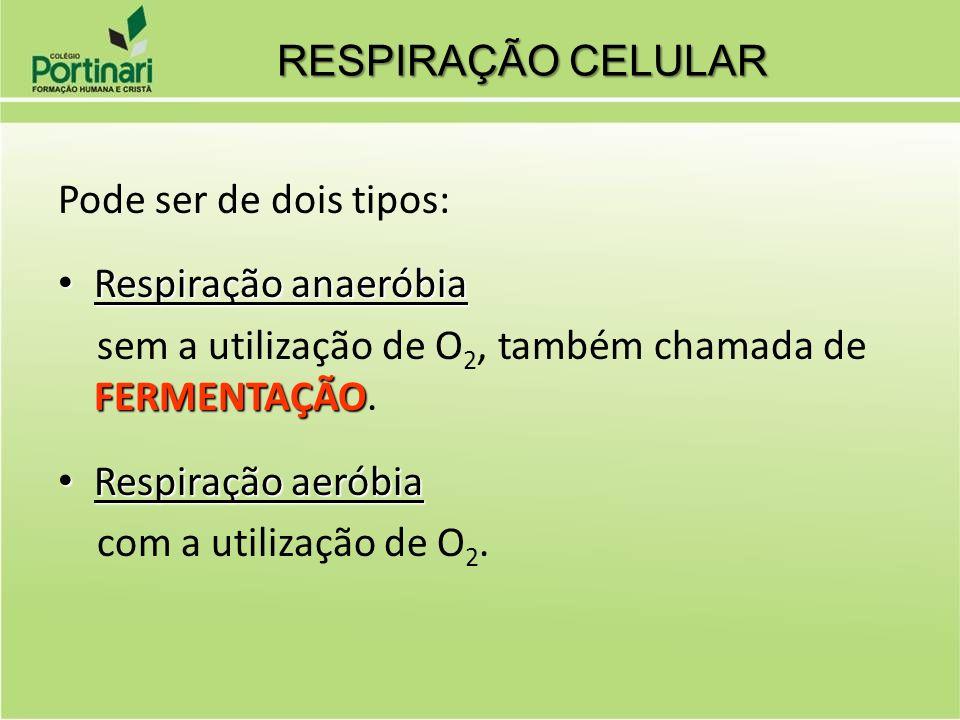 RESPIRAÇÃO CELULAR Pode ser de dois tipos: Respiração anaeróbia. sem a utilização de O2, também chamada de FERMENTAÇÃO.