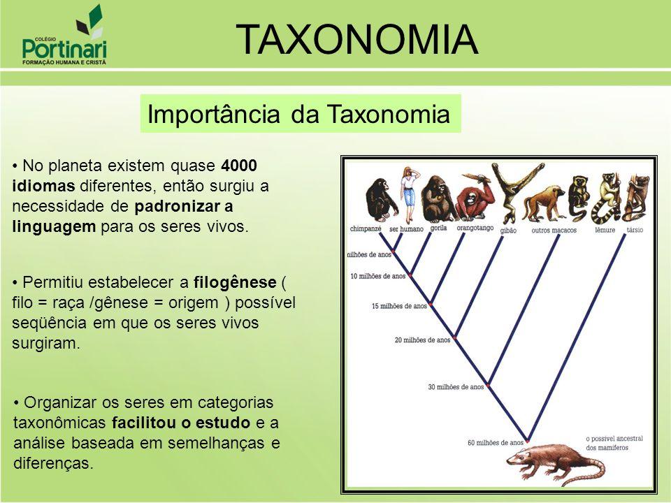 TAXONOMIA Importância da Taxonomia