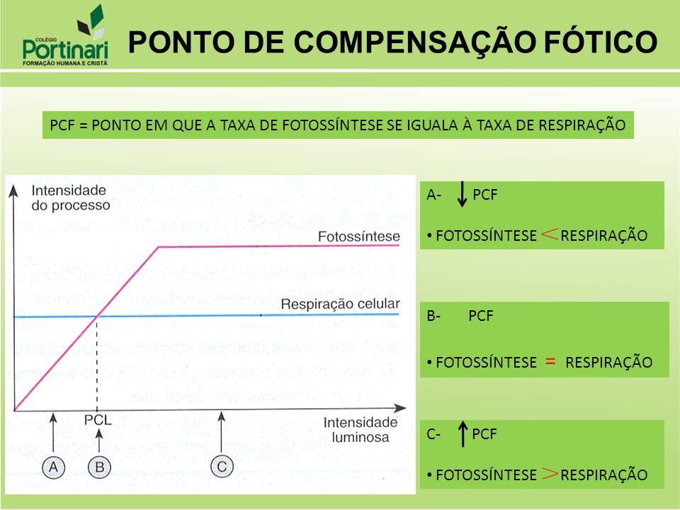 PONTO DE COMPENSAÇÃO FÓTICO