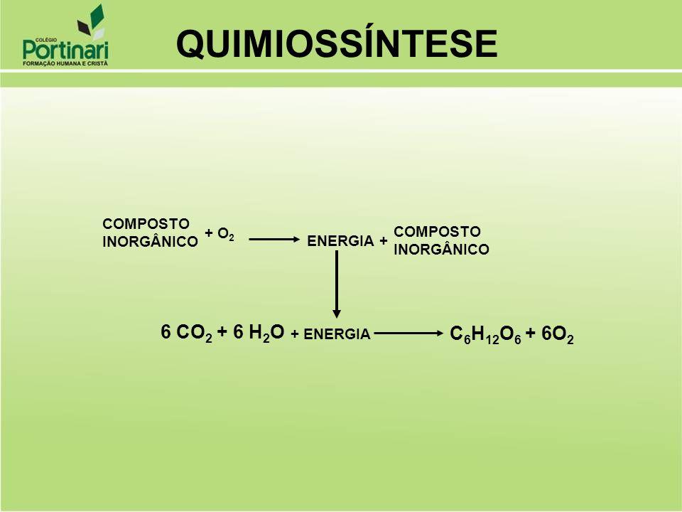 QUIMIOSSÍNTESE 6 CO2 + 6 H2O C6H12O6 + 6O2 COMPOSTO INORGÂNICO + O2