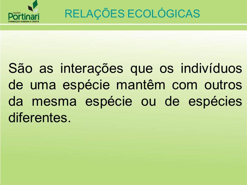 RELAÇÕES ECOLÓGICAS São as interações que os indivíduos de uma espécie mantêm com outros da mesma espécie ou de espécies diferentes.