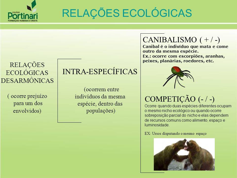 RELAÇÕES ECOLÓGICAS CANIBALISMO ( + / -) INTRA-ESPECÍFICAS