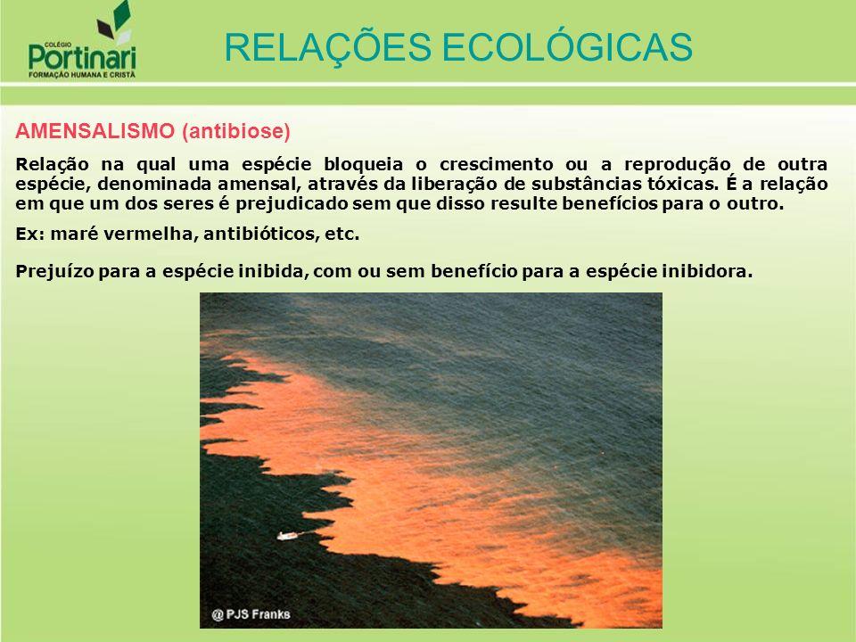 RELAÇÕES ECOLÓGICAS AMENSALISMO (antibiose)