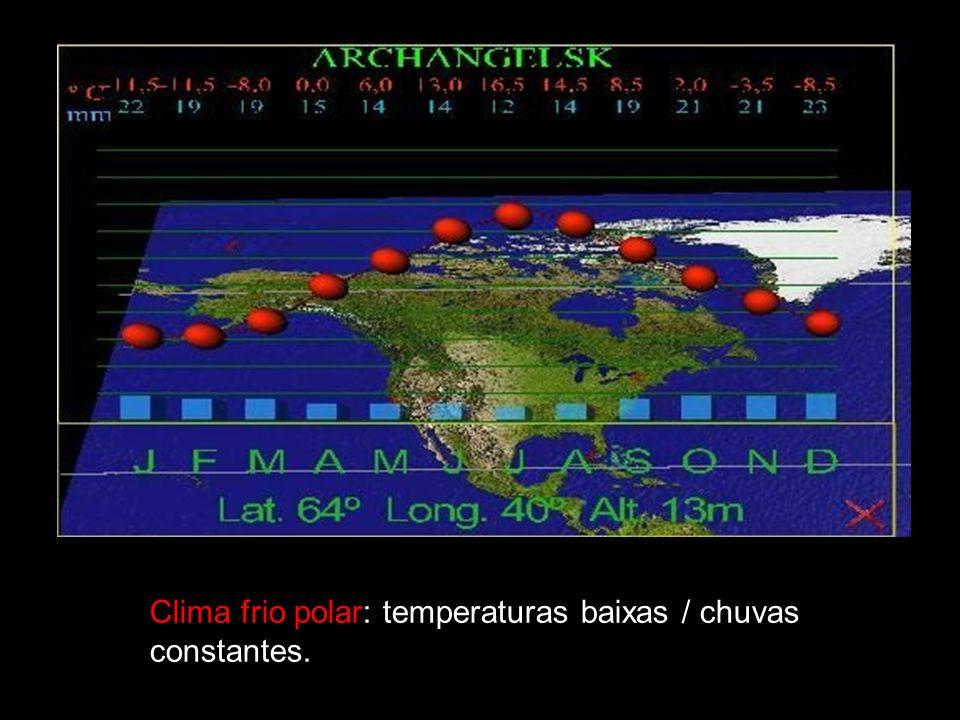 Clima frio polar: temperaturas baixas / chuvas constantes.