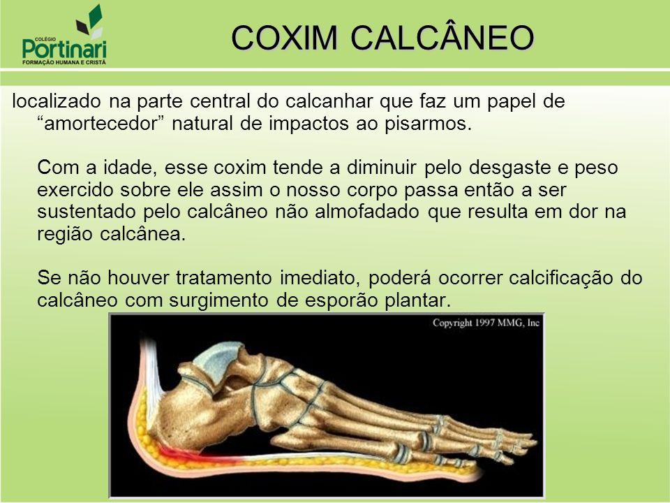 COXIM CALCÂNEO