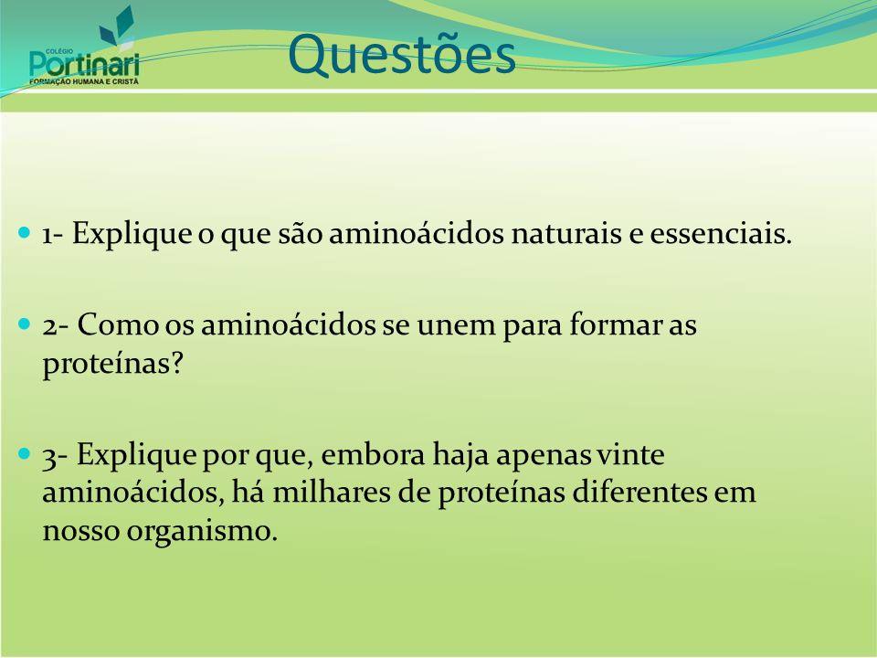 Questões 1- Explique o que são aminoácidos naturais e essenciais.